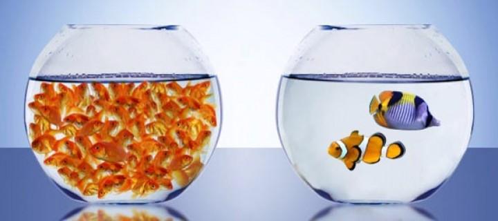 Marketingcom.com te ofrece el análisis, los consejos, las ideas y los métodos –Visión Cliente- más adecuados para mejorar las ventas de tu negocio, reforzar la imagen de marca y fidelizar a tus clientes.